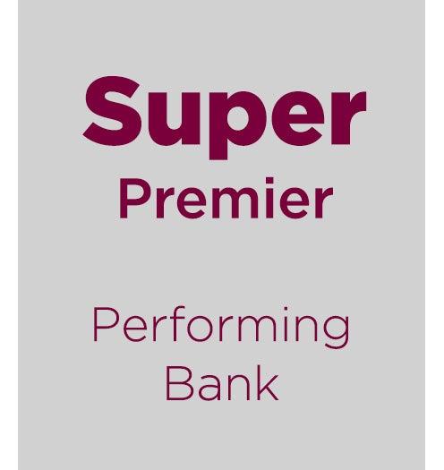 super premier findley reports